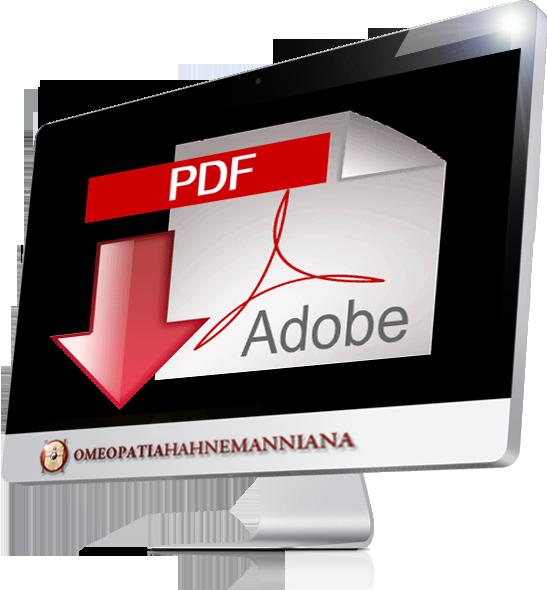 Display_Document_1