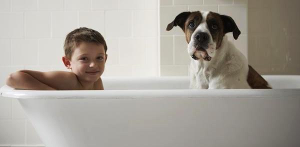 bagno-con-cane